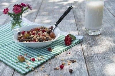 Alkaline Breakfast Cereal with fruit photo